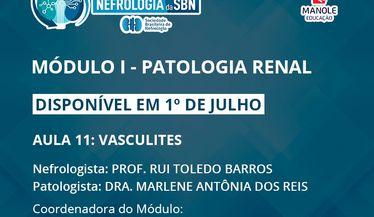 Aula 11 do 1º Módulo do Curso de Atualização da SBN sobre Patologia Renal estará disponível em 1º de julho